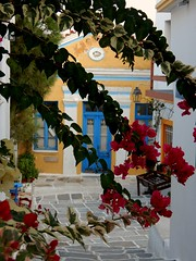 """Don't be pushed by your problems, be led by your dreams..."" (fl_mala) Tags: leykesvillage parosisland greece cyclades ilovegreece traveltogreece greekislands discovergreece island lifeisbetterontheisland flowers paros wonderfulworld"
