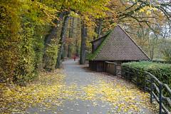 Tiergarten 191011-3 (Gottfried Gillich) Tags: tiergarten zoo nuernberg nuremberg franken frankonia bayern bavaria germany europe