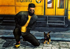 [ 📷 - 164 ] (insociable.sl) Tags: street yellow transport train wagon tram tramway animal pet companion shepherd puppy dog model hipster beard boy man male edit sl secondlife