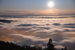 Moonset (Hegglin Dani) Tags: zug switzerland schweiz mond moon moonlight nebel nebelmeer seaoffog