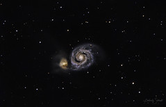 M51 The Whirlpool Galaxy (SpacePaparazzi.com) Tags: astroimage astronomy deepspace galaxy m51 spiralgalaxy spacepaparazzicom celestron zwo