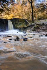 Wepre Park (Philip Brookes) Tags: water stream river waterfall weir brook burn flowing park wepre wood woodland tree leaves autumn rock flintshire
