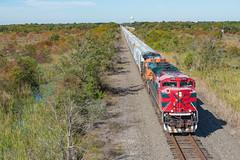 Houston to Galveston (DAL3294 (Ryan N.)) Tags: ferromex sd70ace emd locomotive train bnsf freight texas city railroad