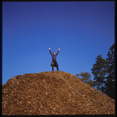 On top of the world (of wood chips) (Jens Jacob - Hej!) Tags: twinlensrefleks fujirdpiii fuji slide mediumformat 6x6 tlr film rollei e6 v700 perfectionv700 zeiss epsonperfectionv700 mellemformat 120 rolleiflex28e