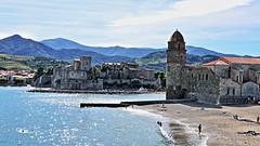 Collioure - Plage St Vincent 5878 (franck.barré) Tags: collioure