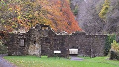 The Ruins of the Palace of Autumn Leaves (byronv2) Tags: edinburgh cramond scotland autumn winter rnbalmond river riveralmond almond coast coastal tree trees autumnleaves red yellow gold colours weir bui building architecture abandoned fairafarmill