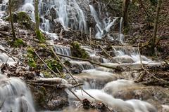 water routes (husiphoto) Tags: bach creek kaskade cascade wasser water landschaft landscape natur nature outside nikon nikkor d750 baum tree stein moos moss stone