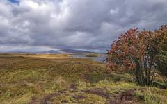 Glencoe (Fil.ippo) Tags: glencoe scotland scottish landscape sky clouds panorama paesaggio rainbow arcobaleno nature tree hill filippobianchi filippo fuji xt2 valley glen