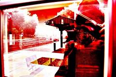 Self Aware (SolanoSnapper) Tags: selfaware wah werehere mirrorprojectflickr hss
