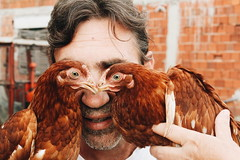 2018-07-01 10.47.35 1 (marijatr96) Tags: man chicken funny animal pet animals cute eyes eye guy smile happy happiness outdoors nature color colors colorful amazing cool photo photography canon 600d creative abstract moment moments laugh bird birds hair beard person portrait gorgeous