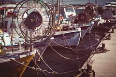 Paphos Harbor (T. Kaiser) Tags: sonyilce7rm3 fe55mmf18za ƒ18 550mm mittelmeer zypern cyprus paphos hafen harbor sea schiffe ships netze net