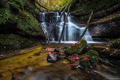Aquaduct Falls (Explored 11.11.19, Thank you so much!) (john&mairi) Tags: aqueductfalls campsiefells autumn cascade waterfall long exposure longexposure le scotland