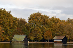 Boathouses on the Serpentine in Hyde Park, London (DESPITE STRAIGHT LINES) Tags: nature mothernature naturalbeauty beauty landscape england sunlight nikon d850 nikond850 nikongp1 paulwilliams despitestraightlines flickr gettyimages morning getty gettyimagesesp despitestraightlinesatgettyimages park parkland centrallondon city capital londontown londonscenes royallondonparks royal hydepark hydeparklondon woodlands tree trees forest autumn leaves grass november sigma60600mmf4563dgoshsmsport sigma60600mmnikon sigma60600mm