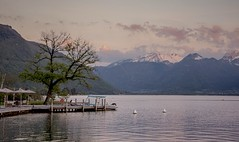 After the sun has gone...xx (shona.2) Tags: sunset dusk snowcappedmountains french alps annecylac lacannecy annecy lake aubergeduperebise talloires france