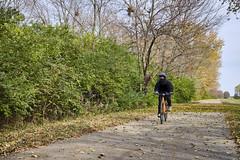 Lone Ninja Rider - Maybe? (Modkuse) Tags: nature natural biketrail people rider fall fallcolors autumn autumnleaves provia fujiprovia xt2proviasimulation fujifilmxt2provia fujifilmxt2proviasimulation fujifilm fujifilmxt2 fujinon fujinonxf1024mmf4rois xt2 madisoncountytransittrails mcttrail railtrail