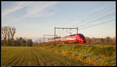 Thalys 4306 + 4305 @ Saintes (Steven De Haeck) Tags: saintes sintrenelde waalsbrabant brabantwallon belgië belgique lijn94 thalys pbka hst tgv paris brussel bruxelles herfst