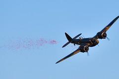 BAC_5409 (chris murkin) Tags: bristol blenheim bomber l6739 gbpiv raf aircraft duxford warbird wwii plane remembrancesunday poppy release