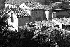 Tetti di Spoleto (Roybatty63) Tags: nikon d80 umbria bn bw biancoenero blackandwhite blackwhite spoleto tetto tetti borghi borgo panorama