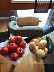 Garden Produce 2018 (daryl_mitchell) Tags: saskatoon saskatchewan canada autumn 2018 garden vegetable potato zucchini squash tomato
