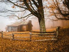 Foggy autumn day in the Applachian's (Dene' Miles) Tags: autumn fall cabin trees leaves fog mountains usa virginia moody landscape iphonex iphone