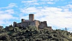 Collioure - Fort Saint Elme 5872 (franck.barré) Tags: collioure