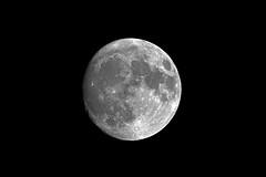 Der Mond über Wanne Eickel (Michael Döring) Tags: gelsenkirchen bismarck vollmond mond moon lune luna tc20eiii afs600mm40e d850 michaeldöring
