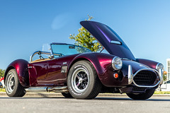 Cars & Coffee #35 (hetrickwesley) Tags: 2019 canon80d carshow cars carscoffee carsandcoffee florida gainesville november sigma1835 sigma1835f18 sigmalens purple shelby roadster kitcar cobra