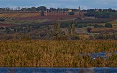 L'automne en Petite Camargue - BFIM9049 (6franc6) Tags: occitanie languedoc gard 30 petitecamargue 2019 6franc6 vélo kalkoff vae novembre