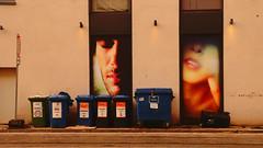 gwb | weinen um muelltonnen (stoha) Tags: müll mülltonne container weinen cry altpapier stoha soh berlin berlino guesswhereberlin gwbgmfdk gwbgerdmittelberg grossenpraesidentenstrase berlinmitte mitte trashcan