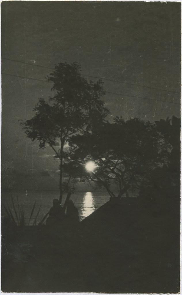 фото: Парк Шевченко - Остров и река ночью PAPER1000 [Вовк В.Н.]