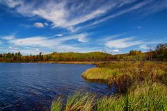 Autumn at Upson Lake, Wisconsin (Tony Webster) Tags: 2019 northernwisconsin september upsonlake wisconsin autumn fall fallcolors foliage lake trees upson unitedstatesofamerica