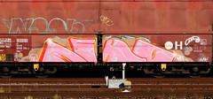 Graffiti on Freights (wojofoto) Tags: freighttraingraffiti freighttrain fr8 freights cargotrain vrachttrein güterzug graffiti streetart amsterdam nederland netherland holland wojofoto wolfgangjosten echo