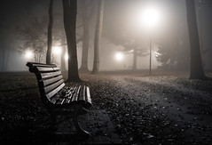 November (--Conrad-N--) Tags: november night nacht park forest fürstenwalde bench reflection fog fall leaves light low sony