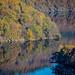 Autumn Reflections / Herbtreflektionen