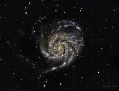 M101_Pinwheel Galaxy (SpacePaparazzi.com) Tags: astro astroimage astronomy galaxy deepspace space stars spacepaparazzicom celestron zwo zwocameras