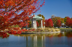 20190121ed (mjrinstl@ymail.com) Tags: saintlouismo forestpark autumn fall trees leaves fallcolors nathanfrankmemorialbandstand