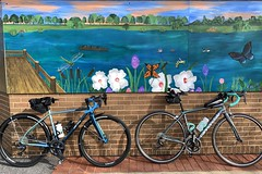Mural at Lake Artemesia (Mr.TinDC) Tags: biking bikes bicycles cannondale synapse allcity cosmicstallion mural painting park lakeartemesia