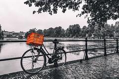 La Haya - HOLANDA (Pepa Morente ( 2.400.000 de VISITAS )) Tags: lahaya holanda bicicleta blancoynegro desaturado color naranja