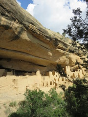 Cliff Palace (Mesa Verde National Park, Colorado) (courthouselover) Tags: colorado co montezumacounty mesaverdenationalpark nationalparks nationalparksystem unescoworldheritagesites unesco northamerica unitedstates us cliffdwellings