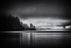 4179-1smBWCrpd   View Across the Inlet (torriejonvik) Tags: black white long exposure inlet trees fog morning vancouver pacific northwest british columbia