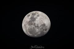 Luna (Gabriel Paladino Photography) Tags: luna moon satelite natural satellite astronomical planet lunar canon sigma 150600 contemporary hënë mond месяц mjesec луна lluna měsíc månen mesiac kuu ilargia lune lleuad lúa φεγγάρι maan hold tungl mēness mėnulis месечината qamar księżyc lua lună месец місяць לעוואָנע handheld night sky eos 9000d 77d gabrielpaladinoibañez