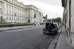 Haut contraste (Pierre-Luc G.) Tags: nikon nikond810 nikonfullframe d810 fullframe lahabana lahavane cuba cubalahavane streetphotography streetshot photoderue