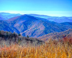 View from Black Balsam Area (esywlkr) Tags: landscape nature autumn fall mountains nationalforest pisgahnationalforest nc northcarolina haywoodcounty