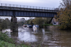 Avon Riverside (velodenz) Tags: avonriverside river avon velodenz fujifilmxt30 saltford bnes banes england unitedkingdom ukcgreatbritain gb