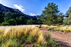 Away From It All (daveanderson14) Tags: nature landscape mountains sky grass trees bigbendnationalpark pinnaclestrail