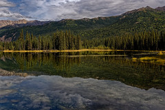 Alaska Has a Spot for Everyone; I Chose This Place on Horseshoe Lake (Denali National Park & Preserve) (thor_mark ) Tags: nikond800e alaska2019 day4 denalinationalparkpreserve denalinationalparkandpreserve lookingne azimuth44 colorefexpro dxophotolab3edited witharsenal imagecapturewitharsenal nature outside landscape cloudy overcast mostlycloudy trees hillsideoftrees rollinghillsides evergreentrees evergreens horseshoelake lake pond alonglakeshore sugarloafmountain alaskayukonranges alaskarange hayesrange mountains mountainsindistance mountainsoffindistance æmountainside mountainpeak ridge ridges ridgeline treereflections treereflectionsonwater glasslikereflections lakereflectionsonwater reflections reflectionsonlake reflectionsonpond reflectionsonwater waterreflections waterreflectionsofmountains clouds horseshoelaketrail project365 portfolio canvas alaska unitedstates êmountainside