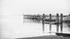 4212-2BWsm  The Pier (torriejonvik) Tags: