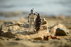 A beach break (radargeek) Tags: burlington vt vermont 2019 july beach lakechamplain clonetrooper toy