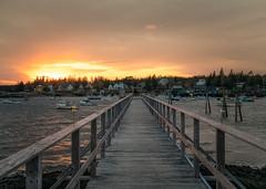 Acadia National Park 2019 (willsdad48) Tags: acadianationalpark nationalparks maine mainecoast newengland bar harbor november 2019 nature travel travelphotography seascapes seacoast boats nikon nikonusa nikond850 low tide