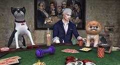 Animal Poker... (ThiegoFire) Tags: rezzroom locktuft equal10 art albino bento boy men man male blog blue catwa colorful cute design dog elegant exclusive event eyes fashion handsome hairstyle hair funny